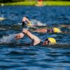 Swimmers in action during the Johannesburg Triathlon on Sunday. Photo: Kevin Sawyer